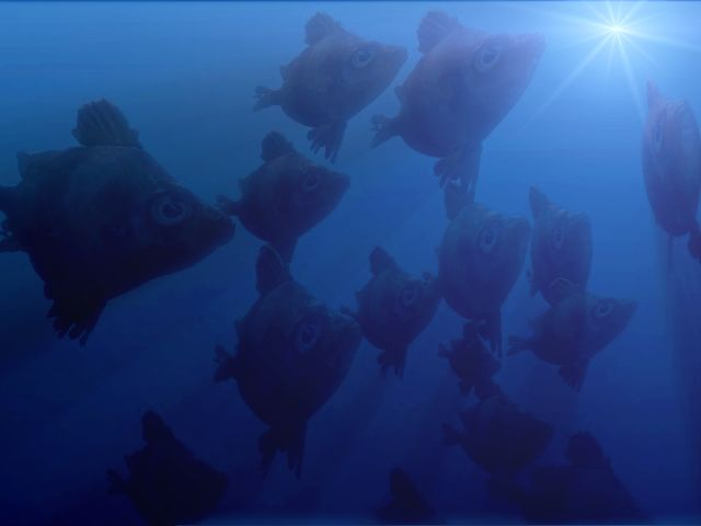 a school of 3D fish, underwater postwork in                   Project Dogwaffle