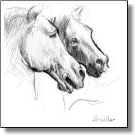 leonardo's horses