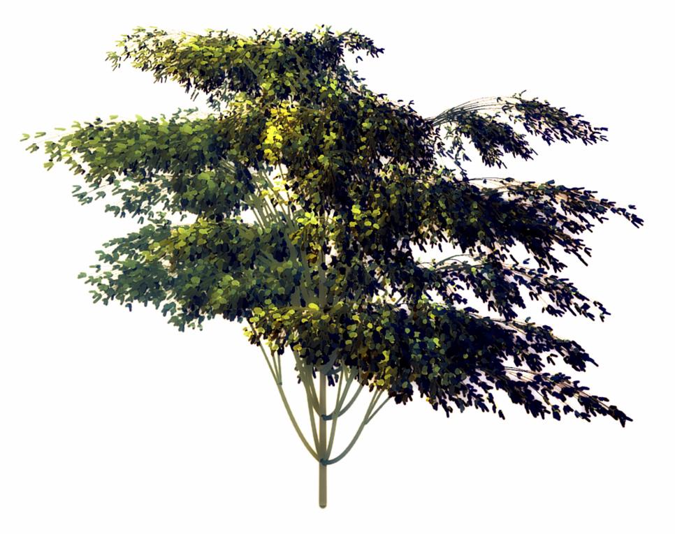 a full tree in a single brush stroke